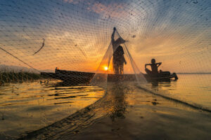 What are the Effects of Commercial Fishing